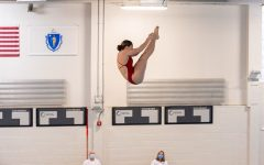 Navigation to Story: Junior beats state and school diving records